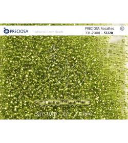 57220 Verde cu Gaură Rotundă