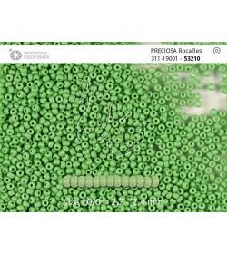 53210 Verde